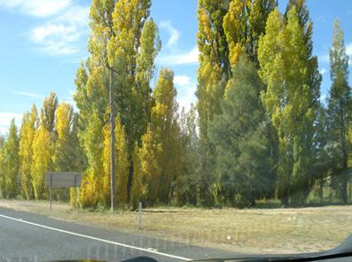 Driving into Bathurst