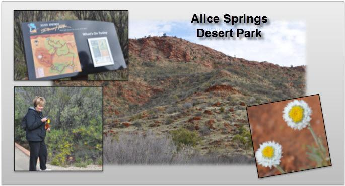 15_05_Alice_Springs_Desert_Park