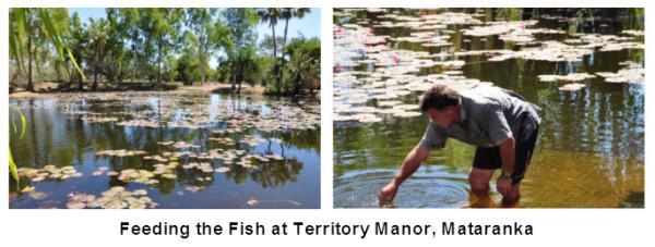 21_03_Fish_Feeding_Territory_Manor