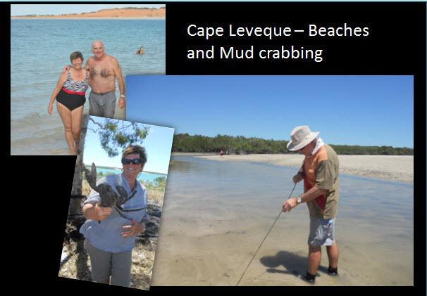 29_02_Cape_Leveque_Beachs_mudcrabs