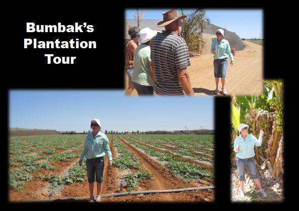 33_01_Bumbaks_Tours