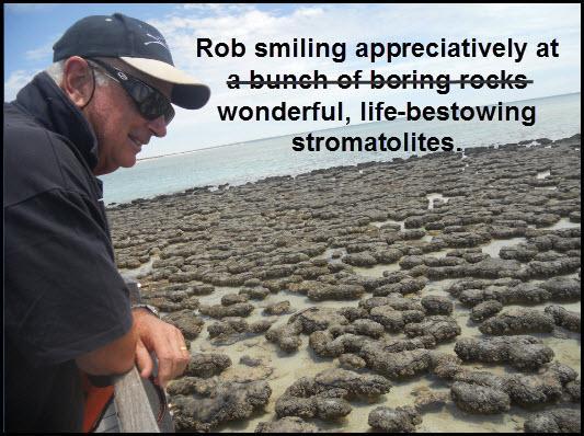 33_04_stromatolites