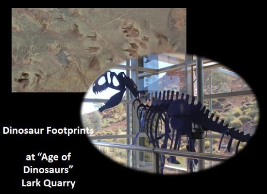 DinosaurFootprints